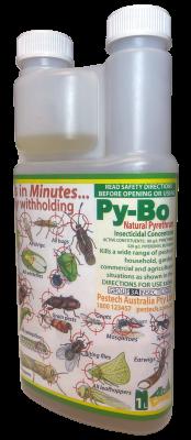PyBo-1ltr